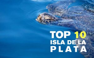 The 10 best pictures of Isla de la Plata, Ecuador